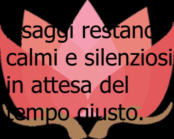 Frasi Zen E Aforismi Zen Frasi Sulla Vita Dalla Filosofia