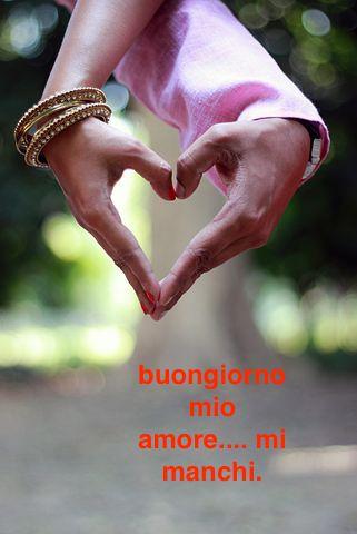 Buongiorno Amore Immagini Immagini Con Frasi Per Messaggi Damore
