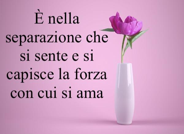 Frasi Amore Frasi D Amore Brevi E Frasi Sull Amore Belle E Famose